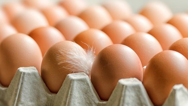 Caso dos ovos contaminados: Portugal não importou lotes com problemas