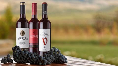 3 garrafas de vinho tinto alentejano