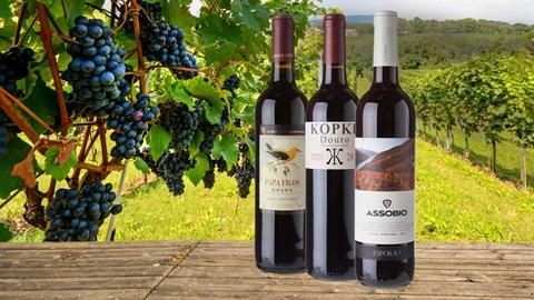 3 garrafas de vinho tinto do Douro