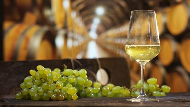 vinho verde branco servido num copo ao lado de cacho de uvas e barricas de madeira em pano de fundo
