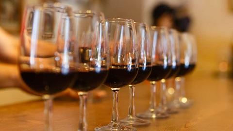 como testamos vinho