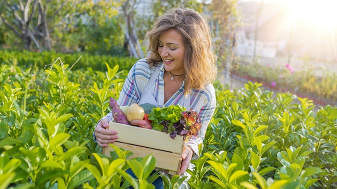 mulher com caixa de legumes numa horta