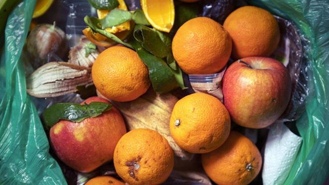fruta no lixo a ser desperdiçada