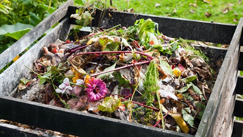 compostagem caseira