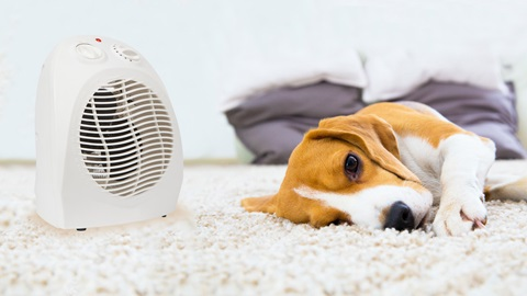 Saiba identificar termoventiladores perigosos