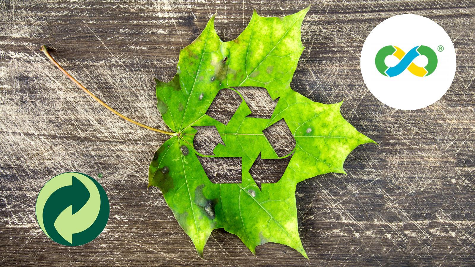 Novo Verde O Novo Simbolo Das Embalagens