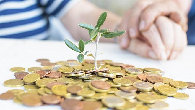 Monte de moedas douradas e cor de bronze em cima da mesa com uma flor verde a nascer no meio