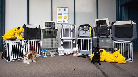 Dois cães de pequena dimensão situam-se frente a uma composição de alimentos e utensílios para cães, entre os quais: dois brinquedos, cinco sacos de ração, uma mochila e doze caixas ou jaulas para transporte ou confinamento de animais.