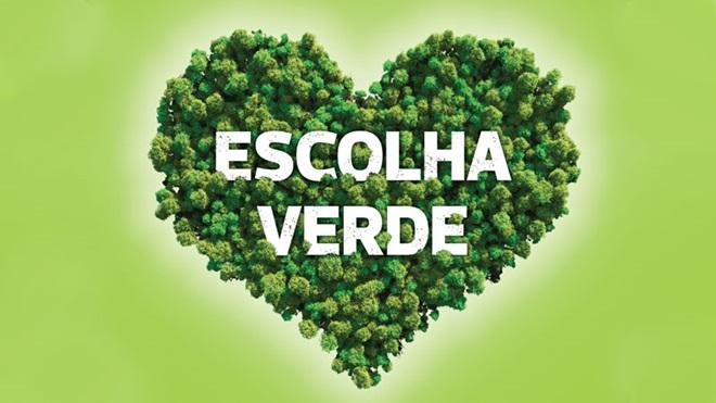 Símbolo em forma de coração com árvores a ilustrar escolha verde