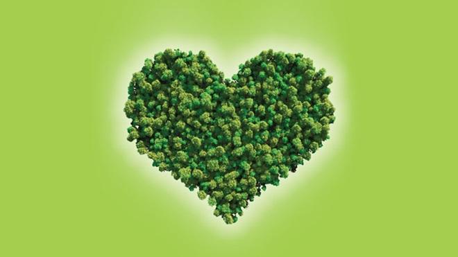Copa das árvores juntas formando um coração