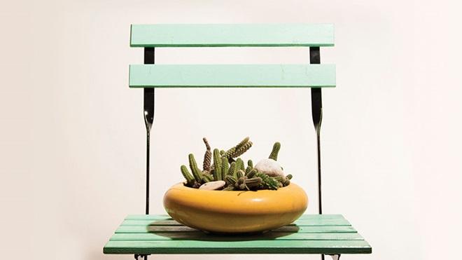 vaso com um cacto em cima de uma cadeira