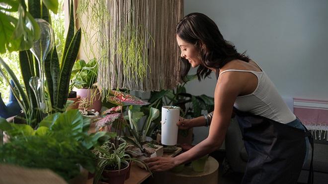 mulher a regar as plantas em casa