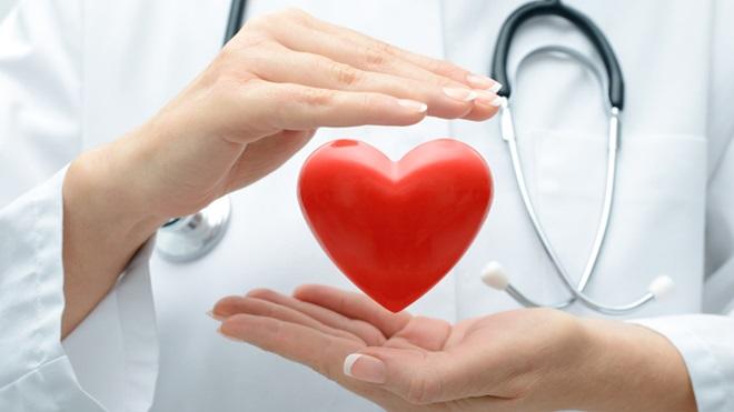 seguro de saude estomatologia