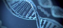 thumb_testes_geneticos_proibidos