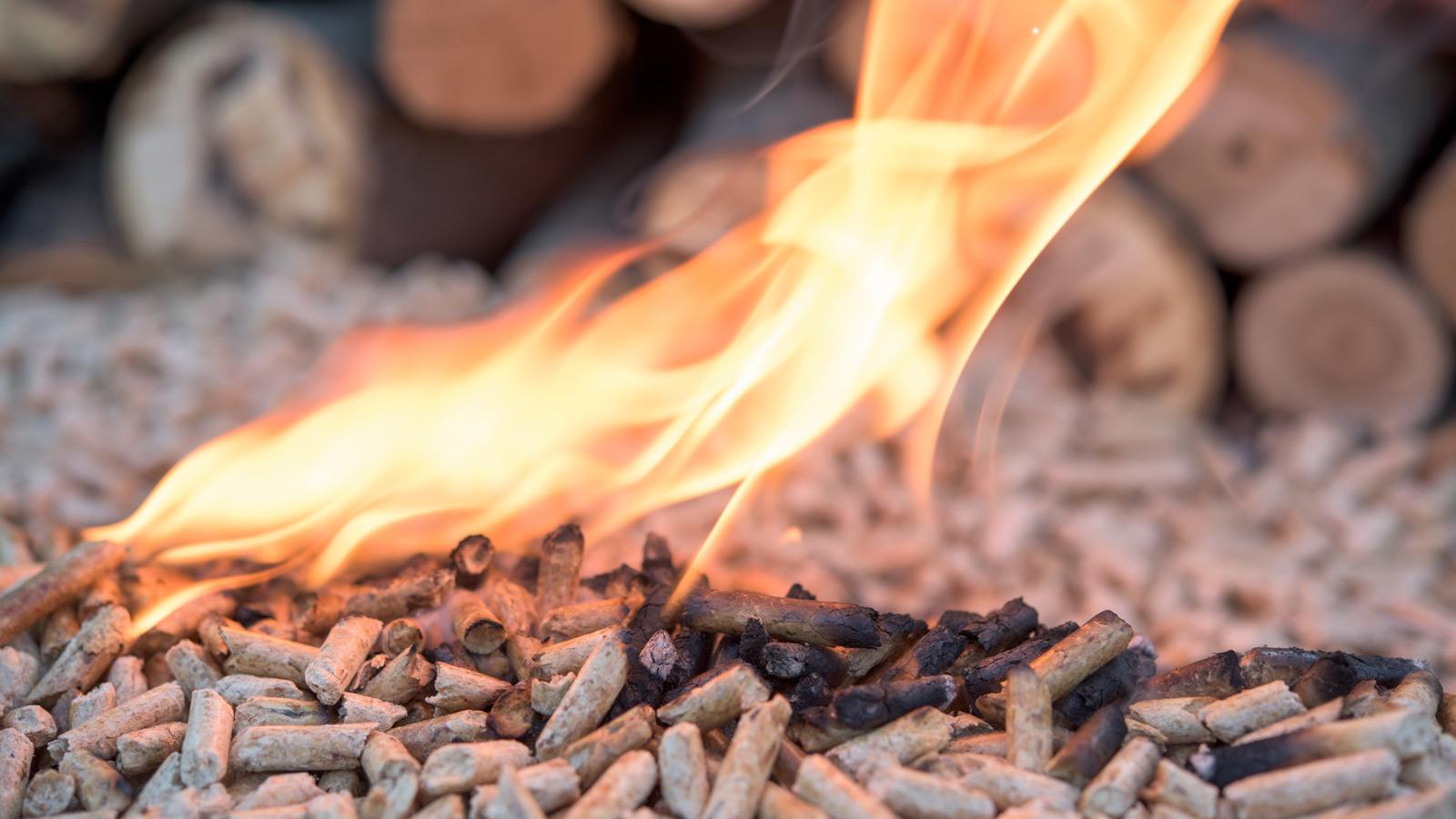 Teste a pellets: sala quente sem desperdício