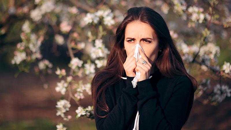 rinite alergica